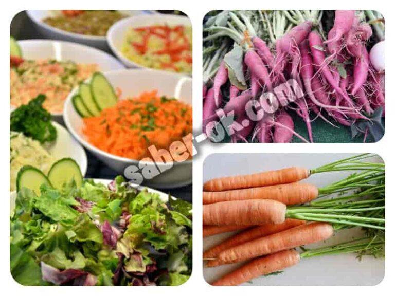 que diferencia vegano y vegetariano