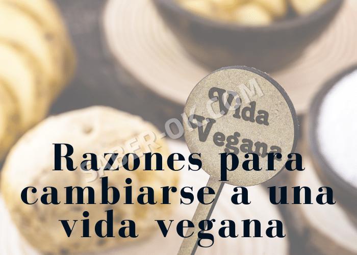 vida vegana